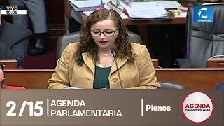 Sesión del Pleno 2/15 (11/07/19)