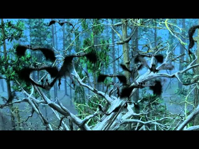 Bats: Human Harvest - Trailer