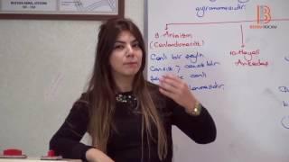 12) Piaget ve İşlem Öncesi Dönem - II - Gelişim Psikolojisi Dersi - Ayşegül Aldemir (2017)