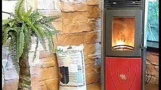Estufas  de biomasa Ecoforest - Wattenergia