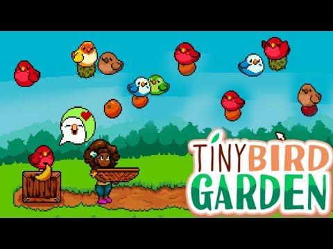 Sqaishey : Tiny Bird Garden Deluxe {3}