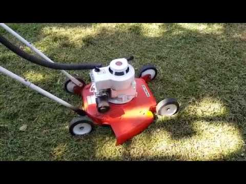 Briggs & Stratton 3.5 hp. Shout out for James Stephenson
