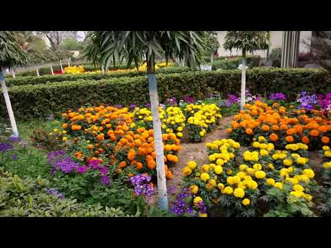 Beche thakar gan_Kantare sukhi_Phiriye dewar gan NAIHRIT'15(BCKV,Kalyani) from YouTube · Duration:  7 minutes 52 seconds