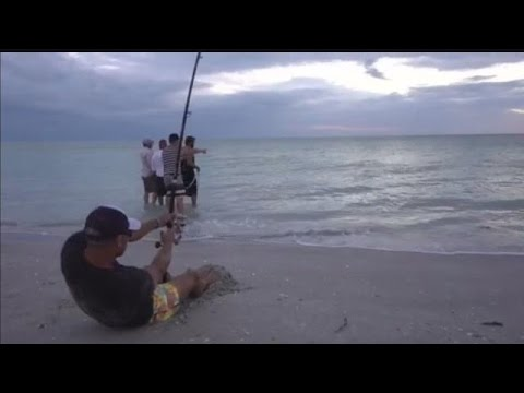 Sanibel fisherman's battle with sawfish catches VP's attention