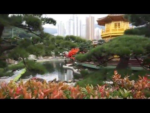 พาไปเที่ยวฮ่องกง#2-Plaza Hollywood-Nan Lian Garden- Harbour City