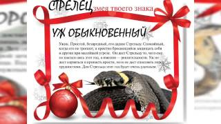 видео ГОД ДРАКОНА гороскоп на 2012 год дракона Люди дети рожденные в год змеи