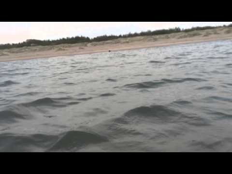 Open The Season in the Baltic Sea - Part II