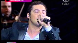 DAVID BISBAL HASTA EL FINAL / Argentina 2013