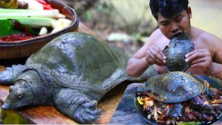 {Graphic} Soft Shell Turtle Clean  Cooking soft Shell Turtle Tasty Food in Asian Culture Recipe