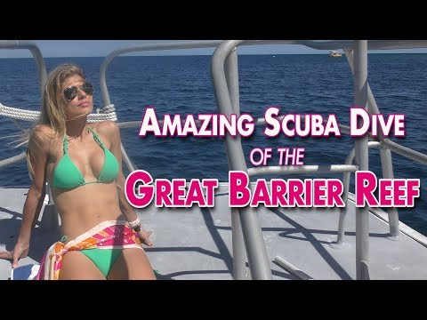 Amazing Scuba Dive of the Great Barrier Reef!!!