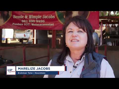 Marelize Jacobs gesels