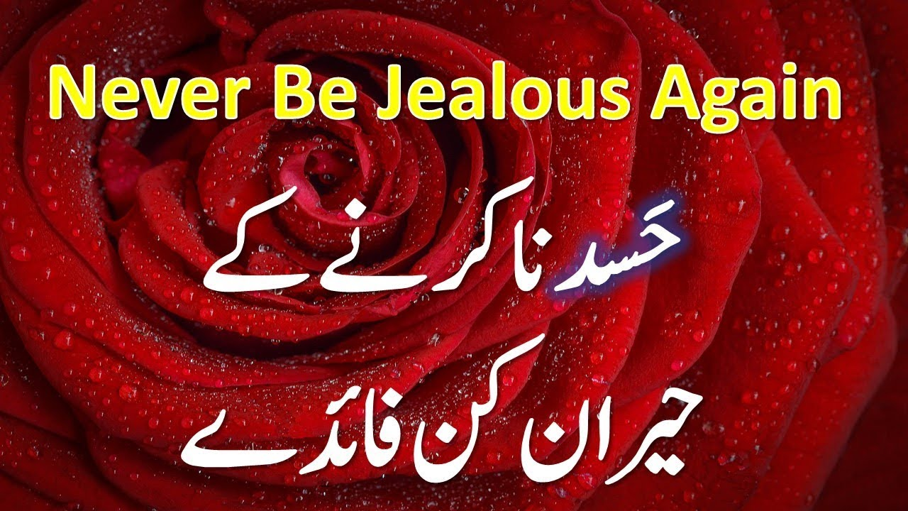 stop being jealous of others