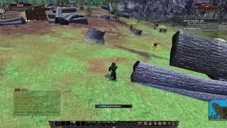 Vanguard: Saga of Heroes   VGEMU   Fresh Character   Isle of Dawn Druid 1-7