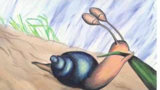 Tiny Snail (Story).m4v
