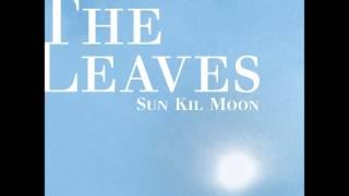 Sun Kil Moon- Lonely Mountain