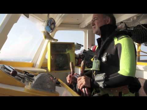 Wreck Diving :The wrecks of France( Lavandou )