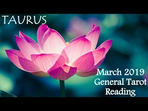 Taurus Strange Message Comes In Unexpected General Tarot Reading March 2019