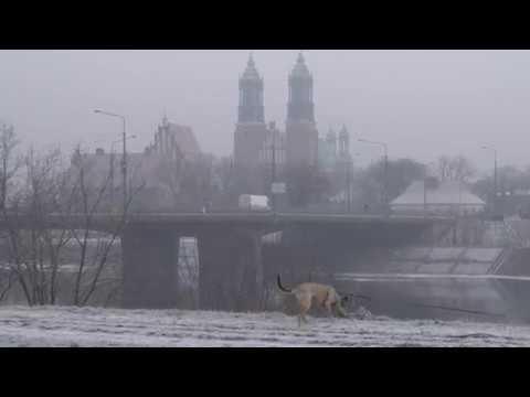 poznan 2018