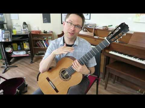 Lesson: Andante Op.60, No.14 by Sor for Classical Guitar (Easy)