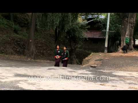 Bhutanese school girls and boys in Thimpu, Bhutan