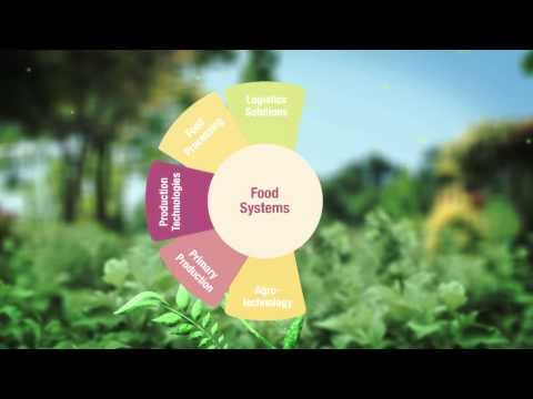 Green Creative Garden -- Sustainable and Effective Solutions for Food Systems
