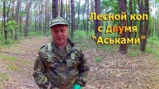 """Лесной коп с двумя """" Аськами"""""""