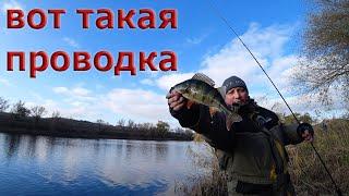 ПРОВОДКА КОТОРАЯ ВЫКАШИВАЕТ РЫБУ Рыбалка на спиннинг