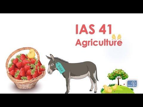 IAS 41 | Agriculture | SBR