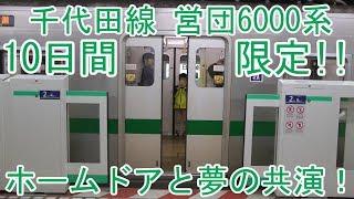 【期間限定】東京メトロ千代田線 営団6000系 ホームドアと夢の共演