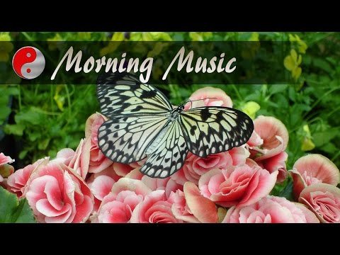 Morning Music For Positive Energy: Beautiful Music With Nature Sounds for Positive Thinking ❤❤❤