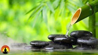 🔴 Relaxing Music 24/7, Meditation, Sleep Music, Calm Music, Healing, Relax, Zen, Sleep, Spa, Study