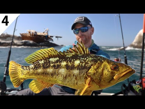 Kayak Fishing For Big Calico Bass {CATCH CLEAN COOK} -- #FieldTrips Mexico Ep 4