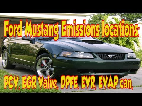 Ford Mustang emissions / Smog locations: EGR Valve + system, PCV, EVAP Canister