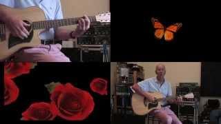 La chasse aux papillons - Georges Brassens (cover)