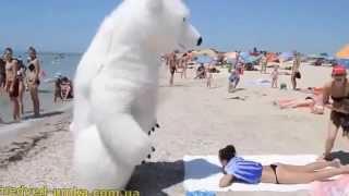 Приколы на пляже с Белым Медведем!   Смотреть Всем! Ржач!
