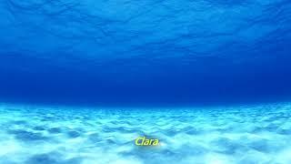 Hayley Williams - Crystal Clear (Legendado em Português)