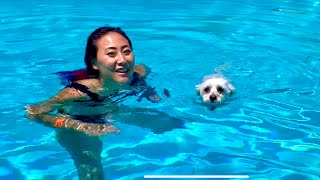 PUPPY LEARNS HOW TO SWIM AT THE NEW TEAM RAR HOUSE!