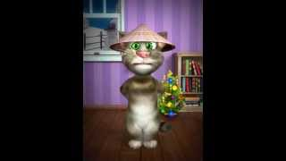 Talking Tom wise old Chinese cat
