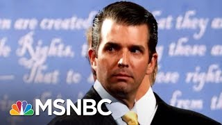 Why We Still Don't Know Everything About Donald Trump Jr.'s Meeting | The 11th Hour | MSNBC