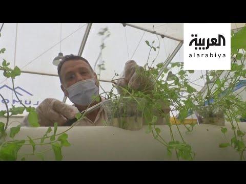 تدريب أممي للاجئين السوريين على التقنيات الحديثة في الزراعة  - 10:58-2020 / 7 / 28