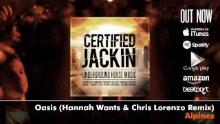Certified Jackin: Underground House Music (Album Megamix)