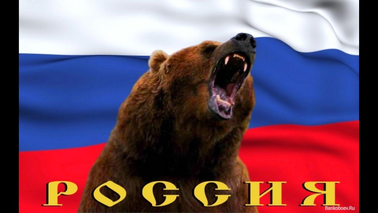 обои на рабочий стол медведь и россия
