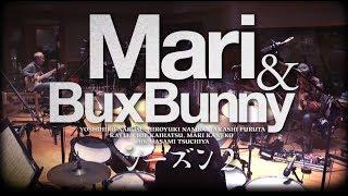 3/6発売!ニューアルバム『Mari & Bux Bunny シーズン2』 https://www....