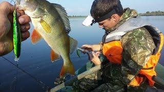 OmskSpinClub #26 Рыбалка на севере Омской области. Щука и окунь на воблеры. Часть первая.(Я всегда говорил, что рыбачить надо за пределами города, и чем дальше, тем лучше. Яркое подтверждение вот..., 2016-08-16T03:45:21.000Z)