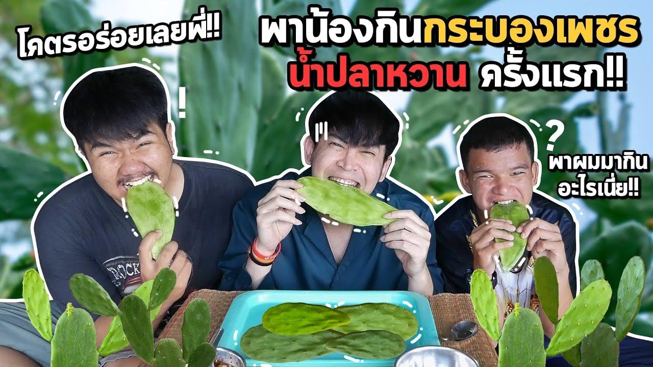ลองกินกระบองเพชร น้ำปลาหวานครั้งแรก โอเล่อร่อยหรืออ้วก?  CACTUS LEAF 선인장