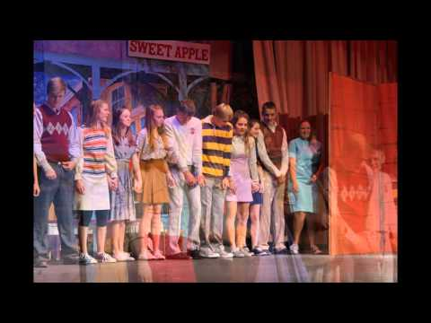 "Halstead High School Presents ""Bye Bye Birdie"""