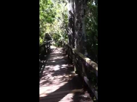 Florida indian reserve boardwalk