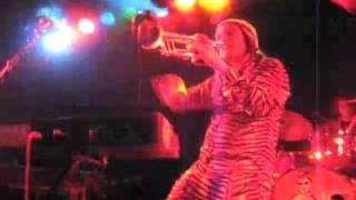 """""""Closet Disco Dancer"""" by Igor & The Red Elvises"""