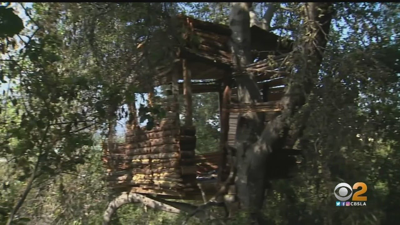 Burglary Suspect Found Living Inside Elaborate Treehouse In Pomona
