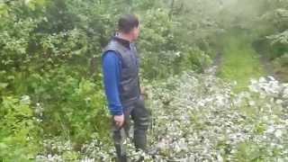 Лес и его препятствия!!!